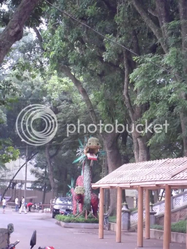 Rồng thiêng đất Việt