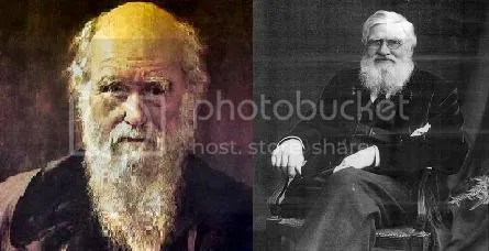 charles darwin vs alfred russel wallace