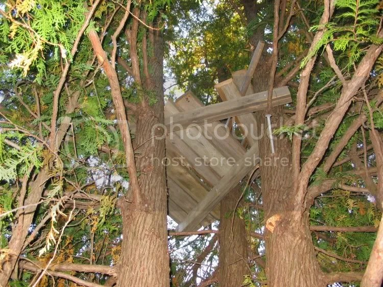 PDF Plans Wooden Tree Stand Plans Download outdoor potting bench plans ...
