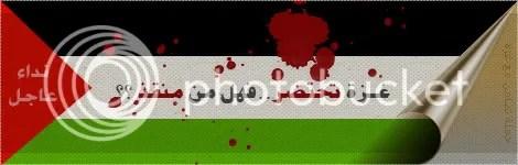 Palestine.jpg picture by elhanem