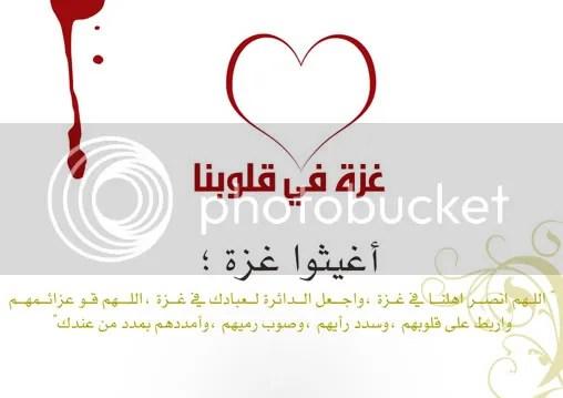 c4b2116ba4.jpg picture by elhanem