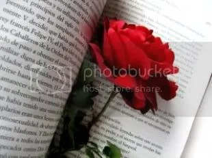 rose_passion_novel_244517_l.jpg picture by elhanem