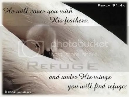 psalm91_4.jpg Psalm 91:4 image by godlygrammy