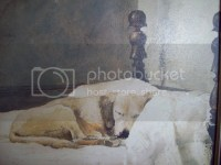 Andrew Wyeth Dog | www.imgkid.com - The Image Kid Has It!