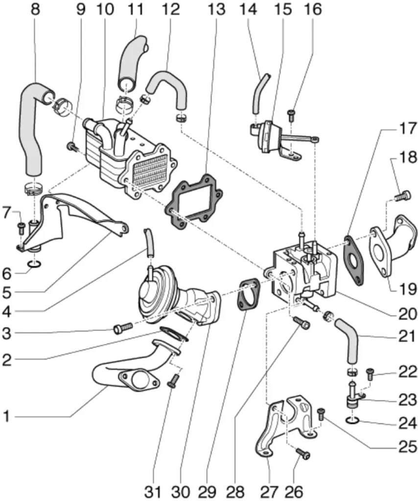 EGR Valve Cleaning Guide