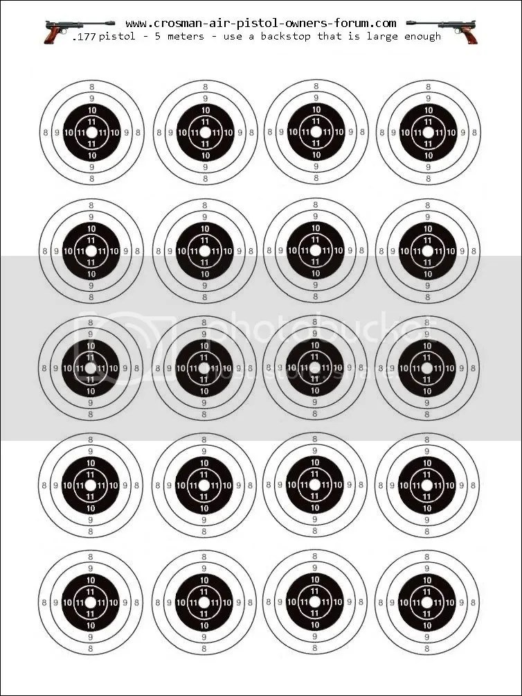 My air rifle target........