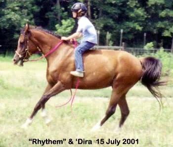 Dira and Rhythem racing at LP Painte Ponys - Parkton