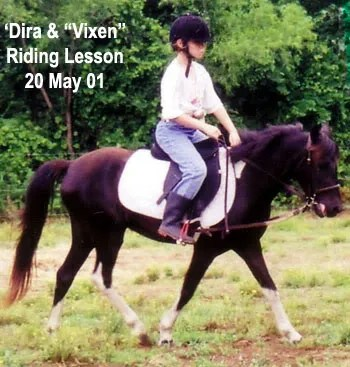 Vixen & Madira - LP Painted Ponys, Parkton, NC - 2001