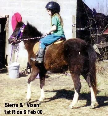 Sierra & Vixen - LP Painted Ponys, Parkton, NC - 2000