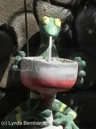 Frog Statue (c) Lynda Bernhardt