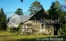 Shack (c) Lynda Bernhardt
