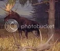 Yabe deer