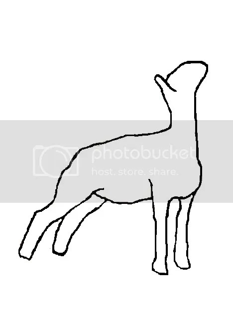 Lamb Drawing Outline Cake Ideas and Designs