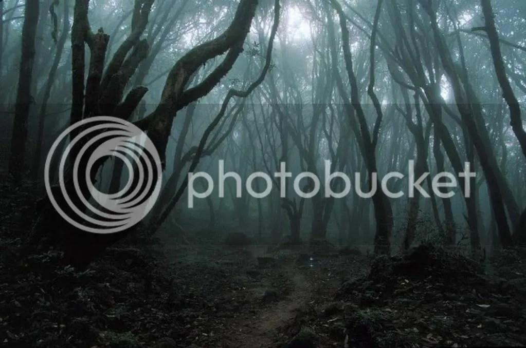 Eichelicher Orgasmus-Bilder