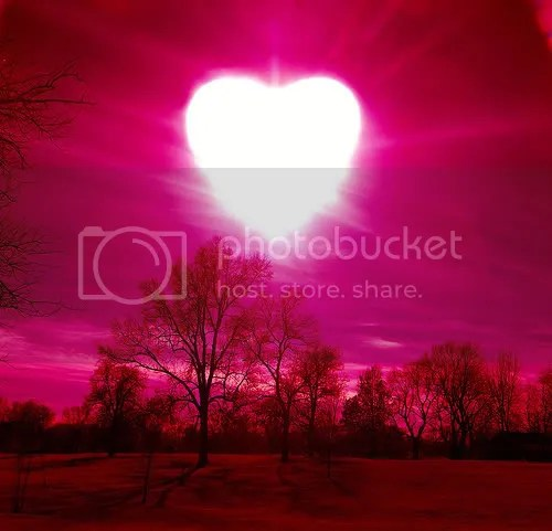 Love Light Pictures, Images and Photos