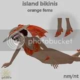 Orange Ferns