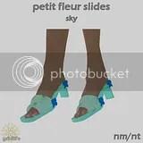 PFS Sky