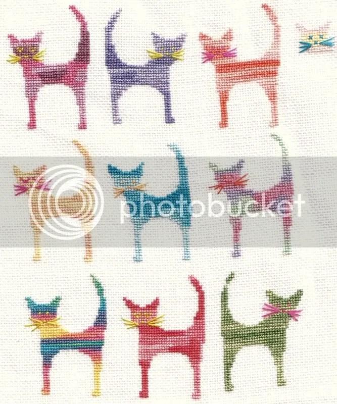 collection de chats