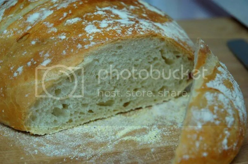 Artisan Bread in Five Minutes a Day? YES! (2/6)