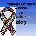 Through The Open Window Autism Blog