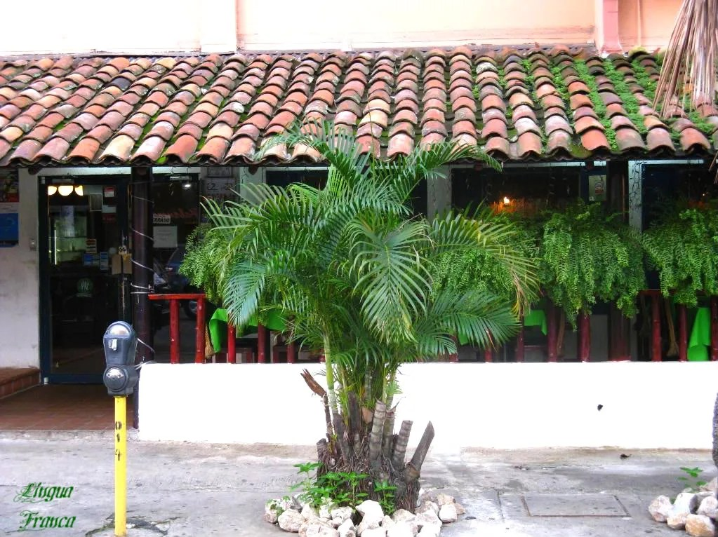 View of the entrace of El Trapiche.  Notice the grass growing on the roof.  (Credit:  Omar Upegui R.)