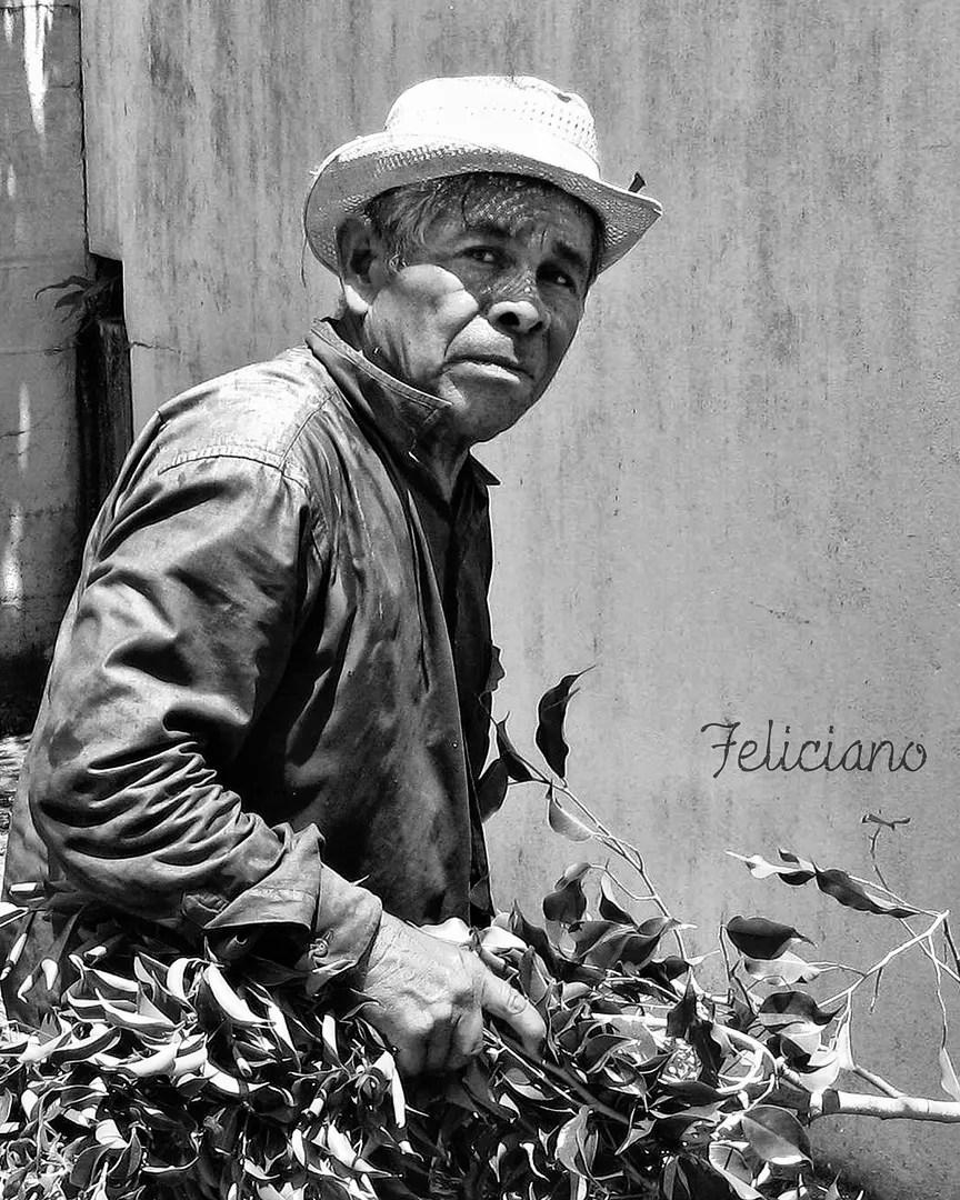 Snapshot of Feliciano, the gardener of El Bosque neighborhood.  Photo by ©Omar Upegui R./Michael Moore.