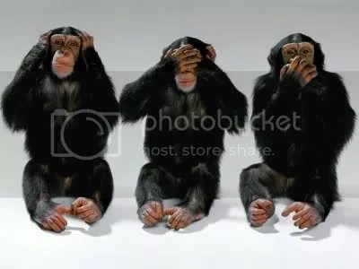 Hear no Evil, See no Evil, Speak No evil Pictures, Images and Photos