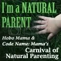 Carnival of Natural Parenting -- Code Name: Mama and Hobo Mama