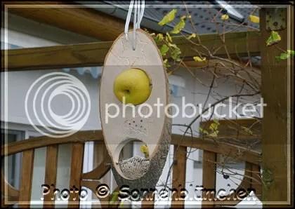 vogelbar photo vogelbar_zps3ad6e1e1.jpg