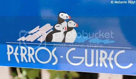 Puffin Sign