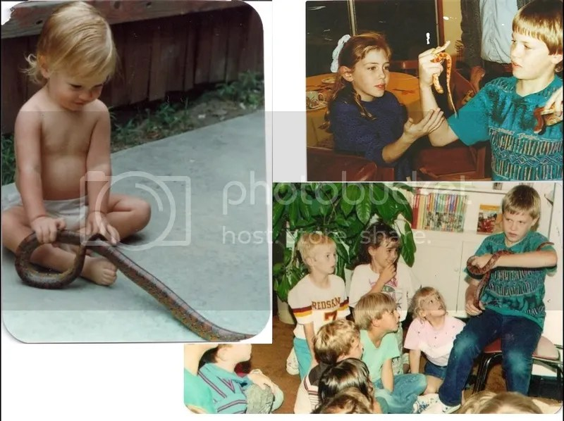Snakes as baby and in childhood