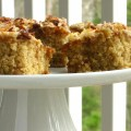 Oatmeal cake with broiled icing willow bird baking