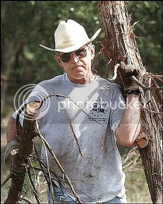shrub clearing scrub