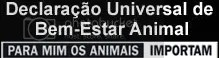 campanha animais