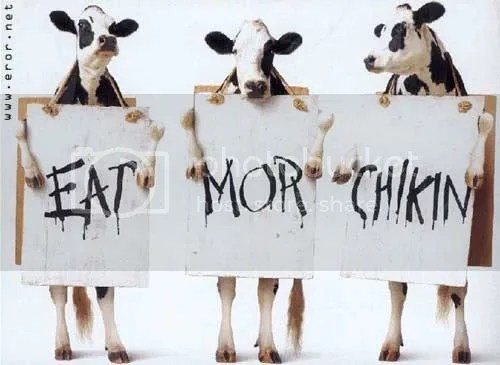 eat more chicken Pictures, Images and Photos