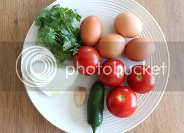 ingredients 27