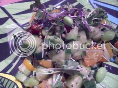 raw salad,raw food recipe,raw food,raw entrees