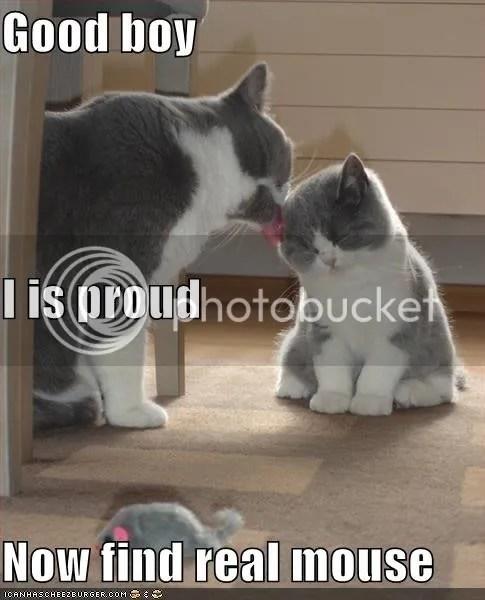 Proud?