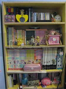 One of the girliest parts of my room...wait, there are no girls on the internet! Also, a pink dumpling appeared.