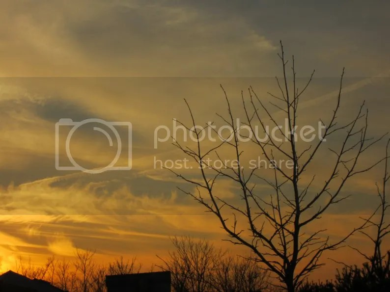 photo ct127135.jpg