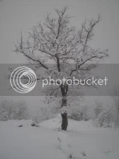 sneeuw in merana