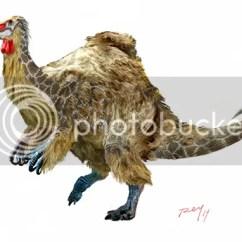 Ostrich Skeleton Diagram Miller Tig Welder Foot Pedal Wiring Deinocheirus New News?