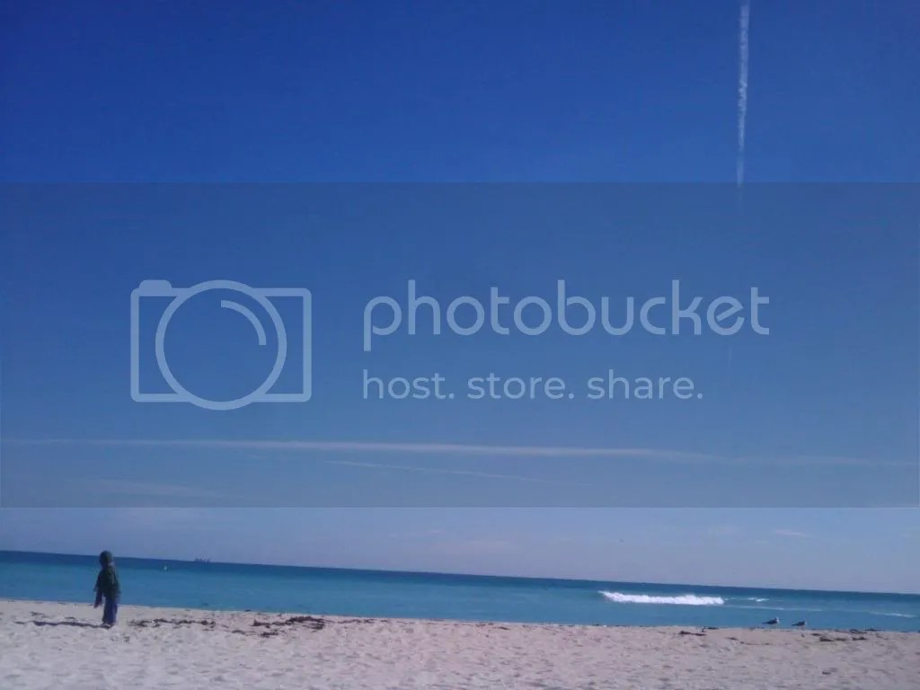 beach photo 2010-01-06131222.jpg