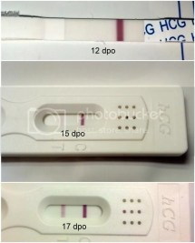 Bfp 14 Dpo Experienced Implantation Bleeding - Year of Clean