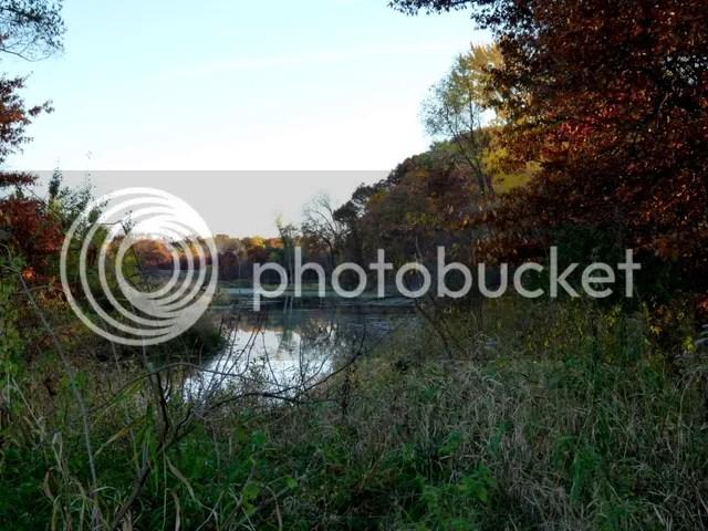 photo P1260216.jpg