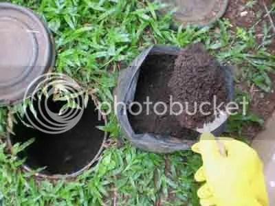 Sampah organik rumah tangga yang sudah menjadi kompos diambil dengan menggunakan cetok (sendok pasir). Pakai sarung tangan karet biar higienis.
