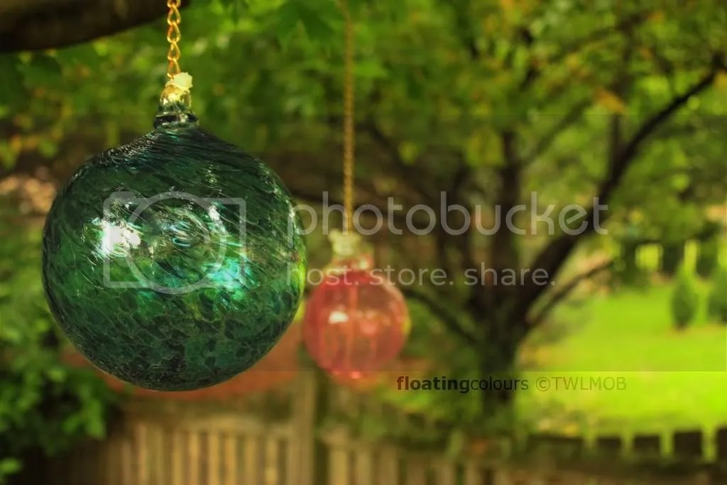 garden ornaments hang from the tree