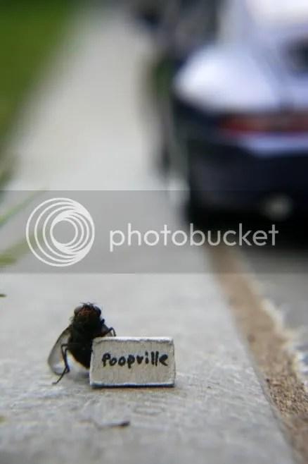 poopville