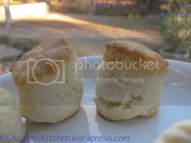 photo biscuits005-1.jpg
