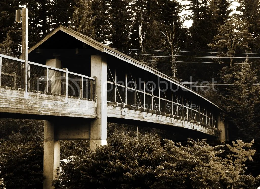 Footbridge, snoqualmie falls Salish Lodge b&w